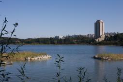 タワーと湖
