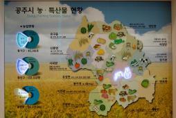 公州市の農・特産物現況