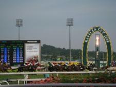 シンガポールの競馬場