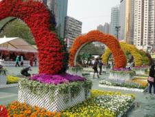 香港フラワーショー
