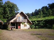 タイ・エレファントホーム