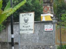 ハッテンワイン醸造所