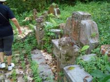 Bukit Brown Chinese Cemetery