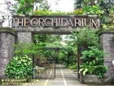 THE ORCHIDARIUM