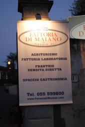 ファットリア・ディ・マイアーノ