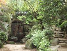金剛植物園