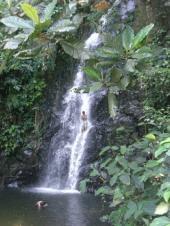 ドリアン滝