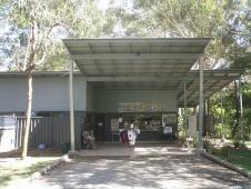 コアラ病院