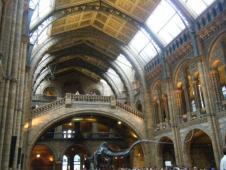 自然科学博物館