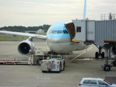 2011年  夏  大韓航空機内食