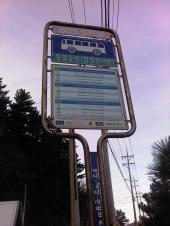 江陵の市内バス