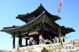 世界遺産と水原華城ツアー(全日)