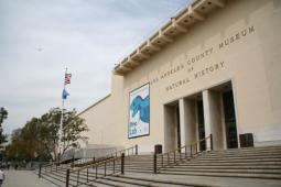 ロサンゼルス群立自然史博物館