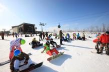 白い雪の上でスノーボードの板を履いている人々。
