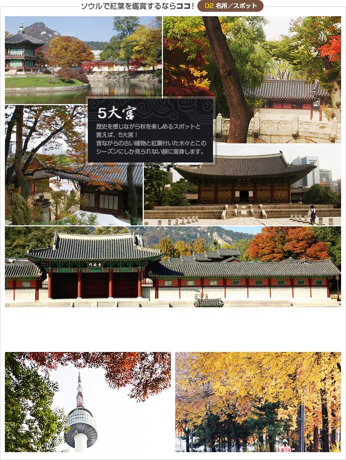 ソウルで紅葉を鑑賞するならココ!