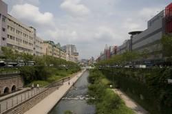 中央に川が流れており、両サイドにビルが建っている。